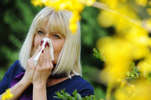 Tips for Managing Your Senior Loved One's Allergies